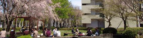 農工 状況 出願 東京 大学 一般選抜志願状況