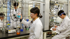 Department of Organic and Polymer Materials Chemistry